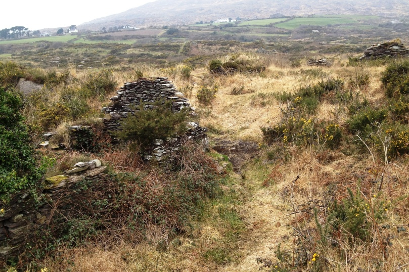 An abandoned village slowly returns to the bog