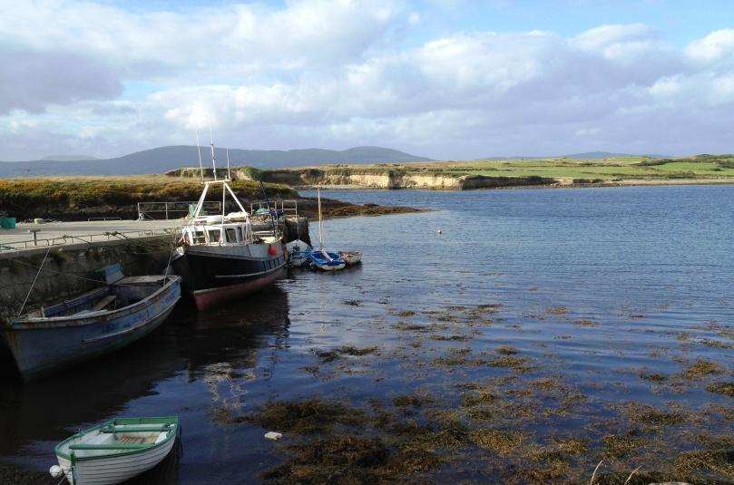 Dunmanus Harbour