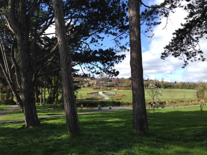 City Amenity: Cabinteely Park