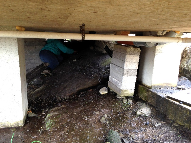 Finola goes underground
