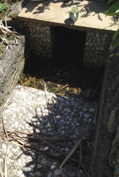 Tobar Chiarain - St Ciarán's Well
