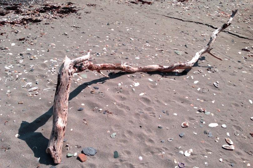 Shelly Beach - our local secret