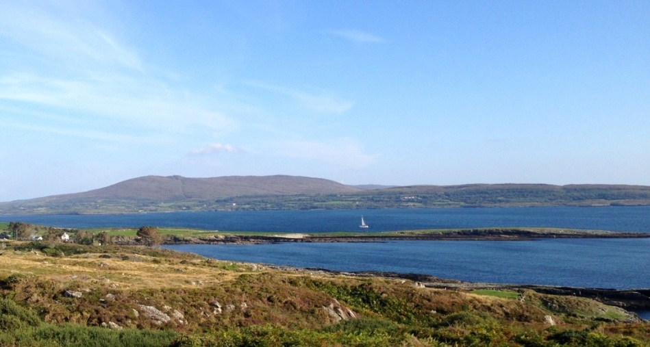 Merlin on Dunmanus Bay