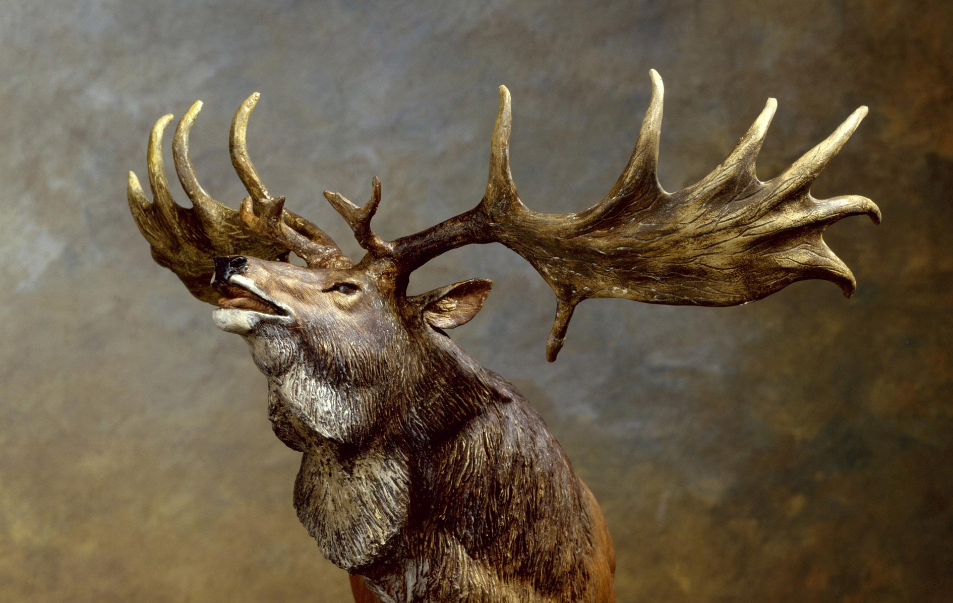 Giant Elk Roaringwater Journal