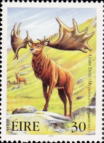 meg stamp