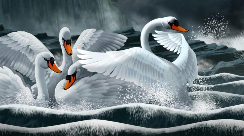 Artist Warren Osborne's depiction of the enchanted Swans