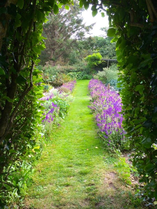 Glebe Gardens in the autumn