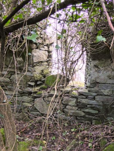 Enigmatic Walls