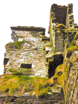 Ruins of Rossbrin, showing the stairway cavity and a large press