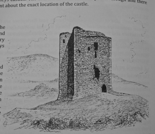 Dunmanus Castle