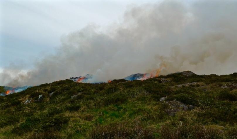 Burning the land