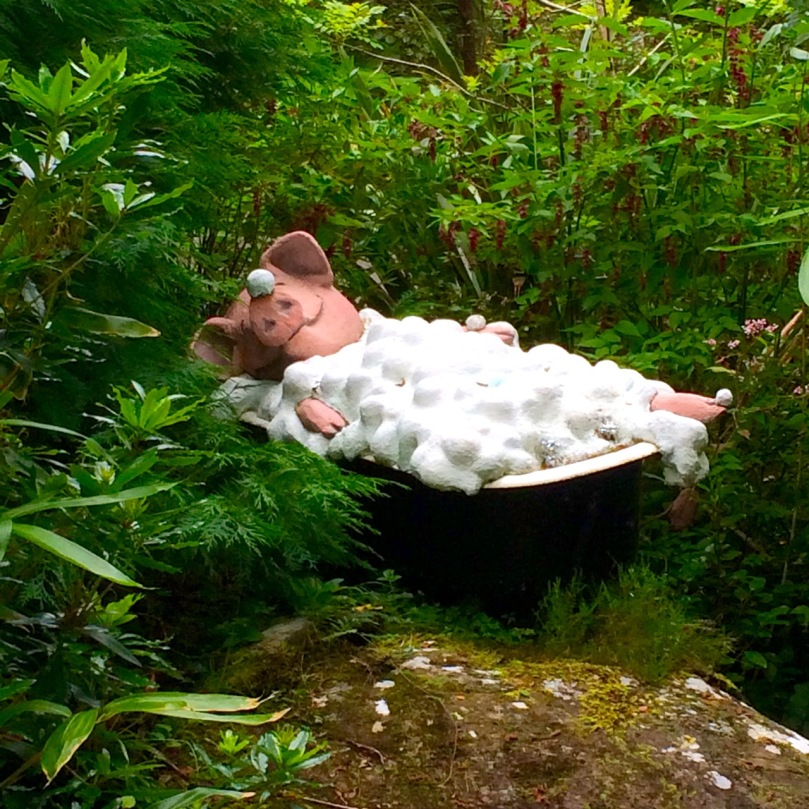 Pig in tub