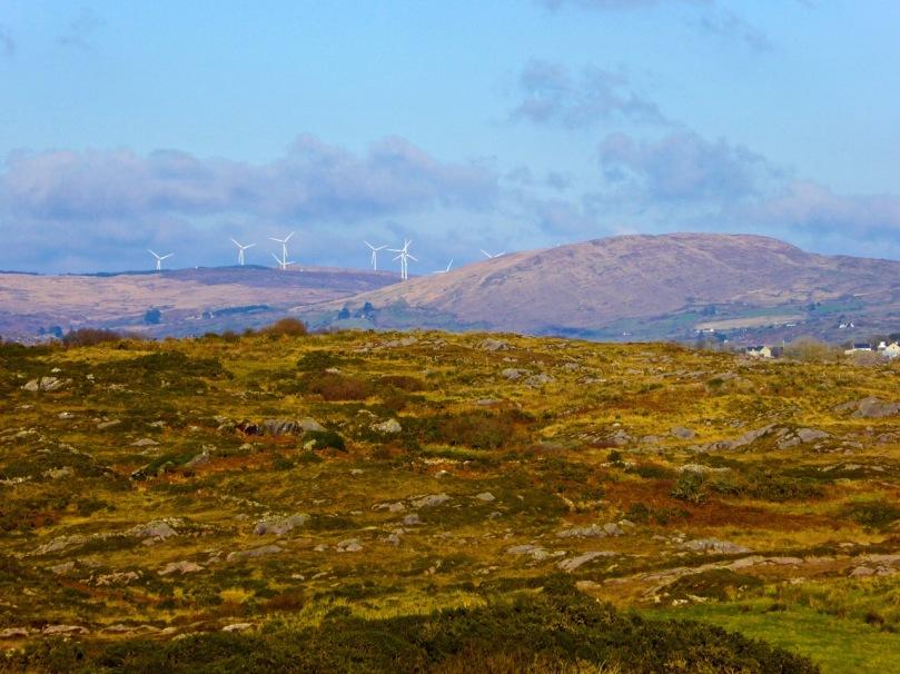View to Mount Kidd, Rossbrin Walk