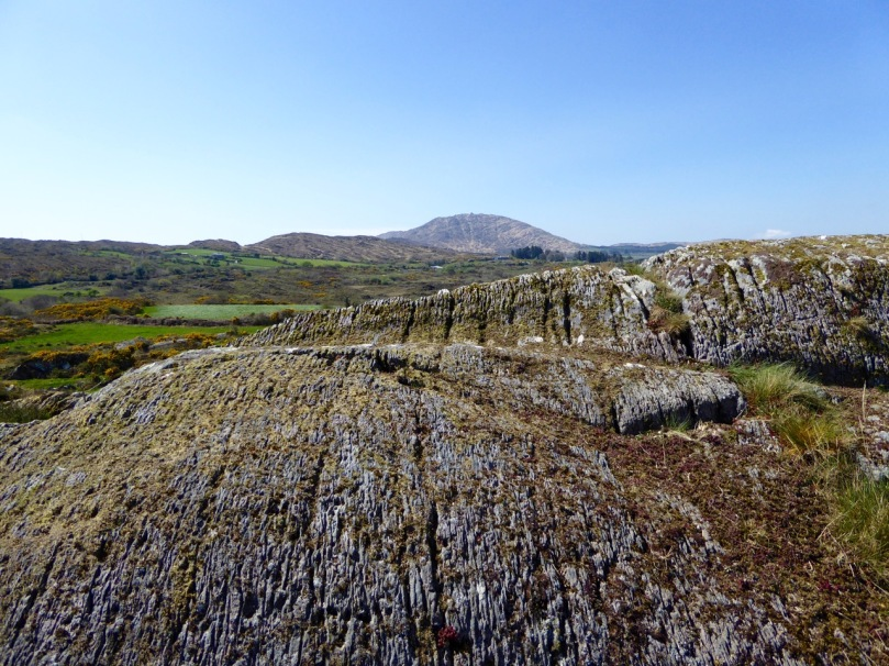 Rathruane More: the view from the rock art site includes a knoll with a row of cupmarks on its upper surface, and Mount Gabriel on the horizon