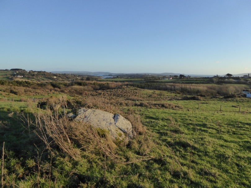The newly-discovered Kilbronoge cupmarked stone. From it you can see Roaringwater Bay and a wedge tomb to the SE, and Mount Gabriel diametrically opposite in the NW