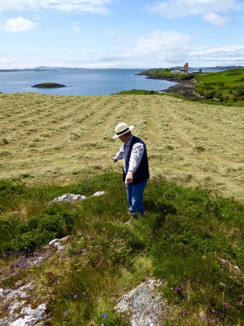 Robert points to two outcrops in Kilcoe. The lower one has one cupmark, the upper one has 13 cupmarks arranged in a rough circular patter. The sea and Mount Gabriel are visible from this location, as well as some rock art