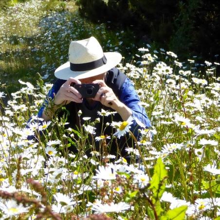Robert photographing daisies