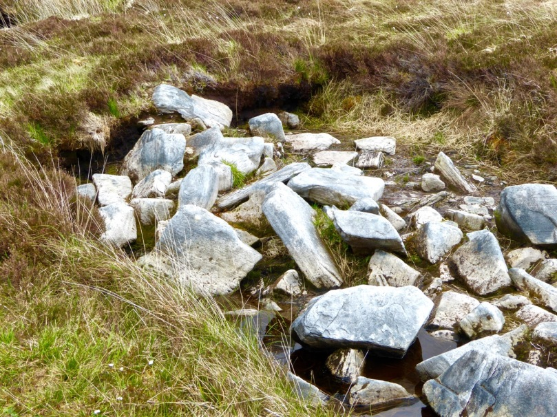 A section of wall disappears under the bog