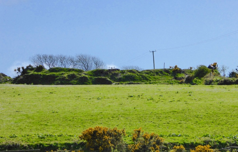 Ballycummisk Ring Fort