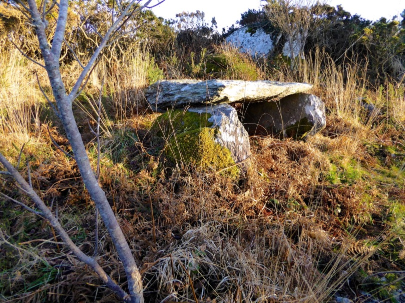 Kilbronogue Wedge tomb