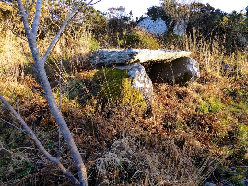 Kilbronogue Wedge tomb