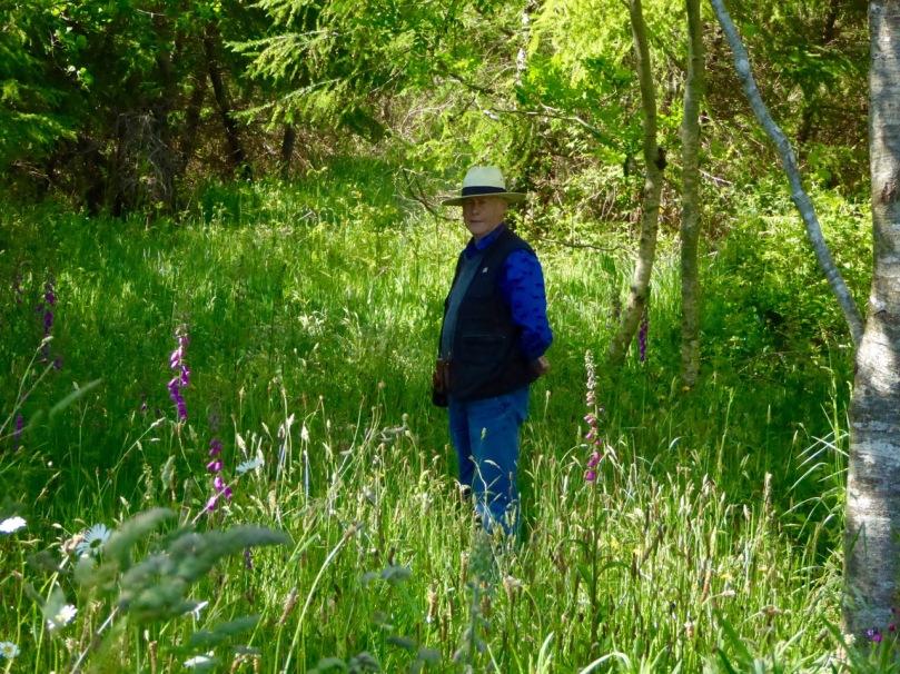 Path to wedge tomb, Kilbronogue