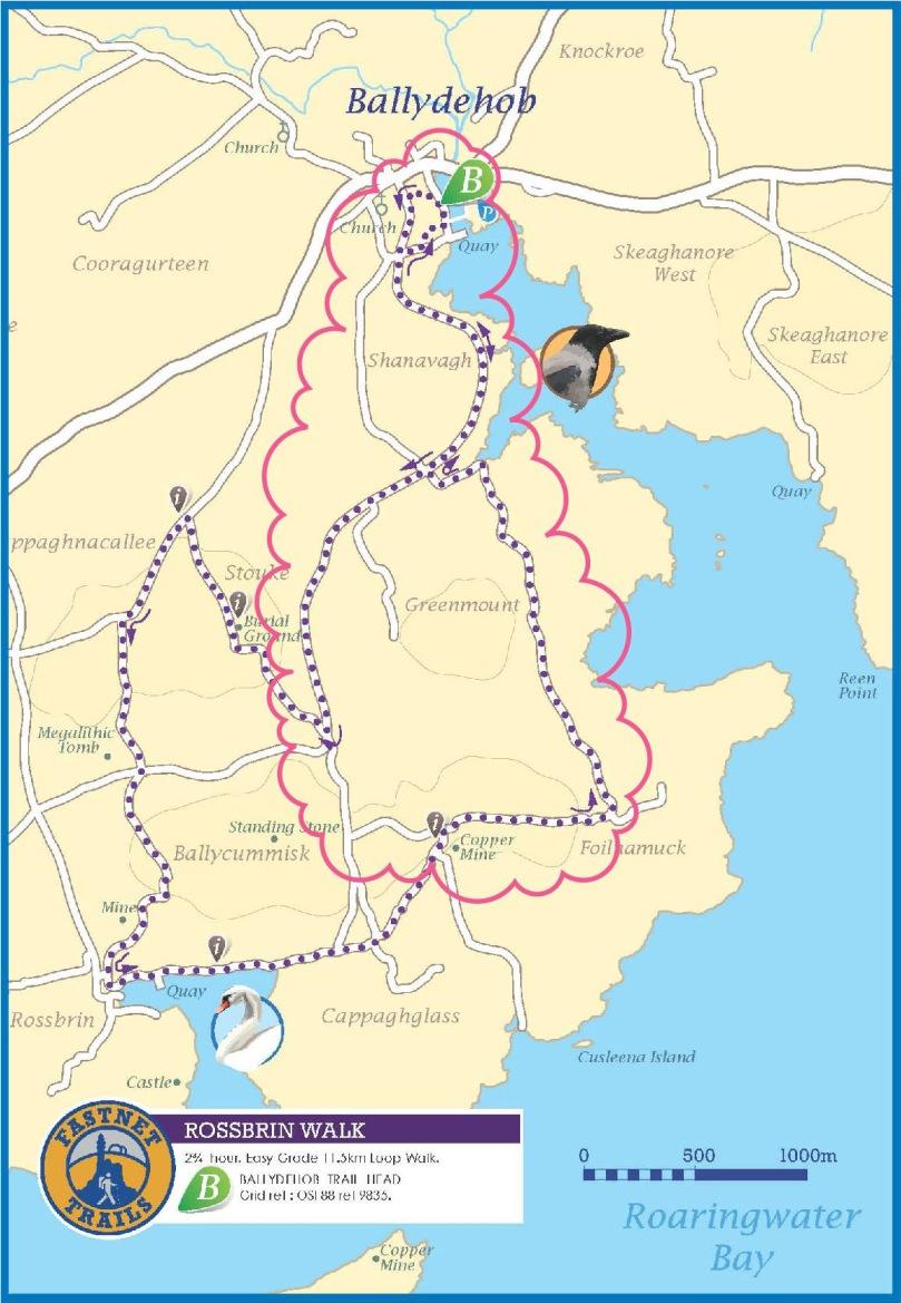Rossbrin Trail 1