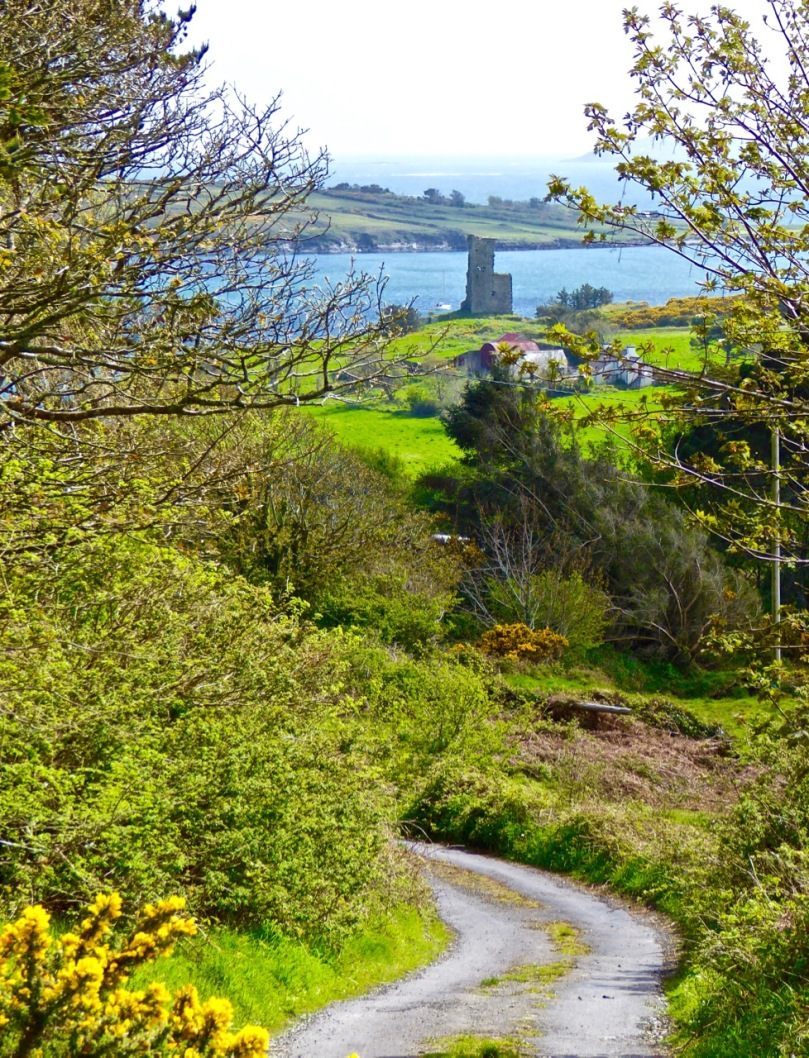 The first hill affords lovely views back to Rossbrin Castle
