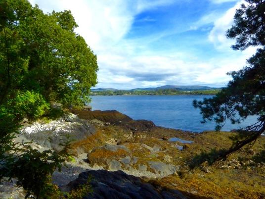 Quiet cove, Bantry Bay