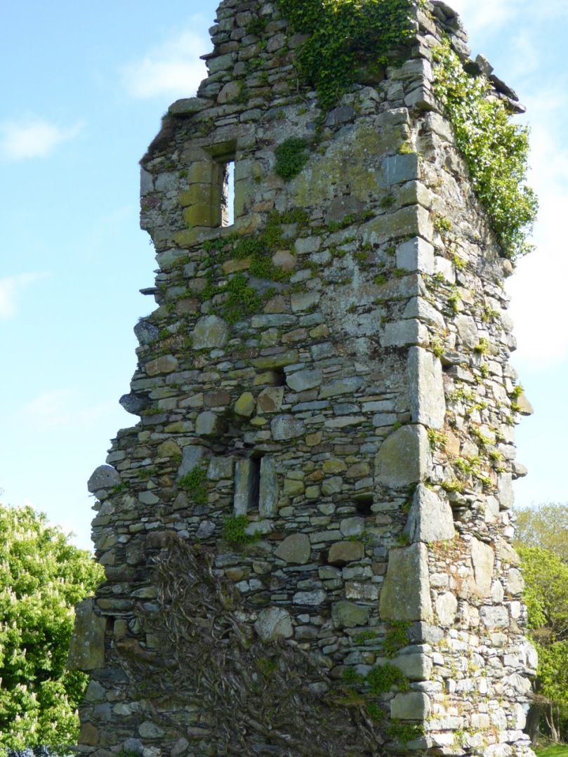 A vestige of a tower house at Abbeymahon, near Courtmacsherry, shows the best cut stones reserved for the quoins