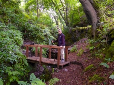 Bridge to holy well