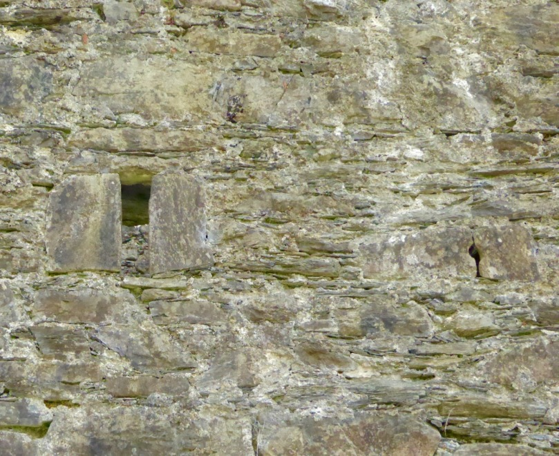 Carriganass Castle has many loops - the tiny one in this pictures seems to small to be useful