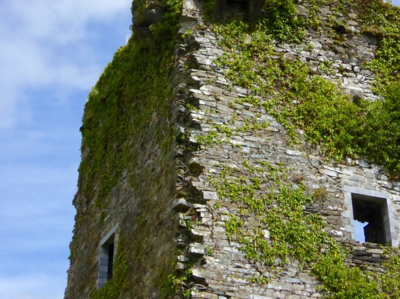 At Carriganass Castle most of the quoins have disappeared