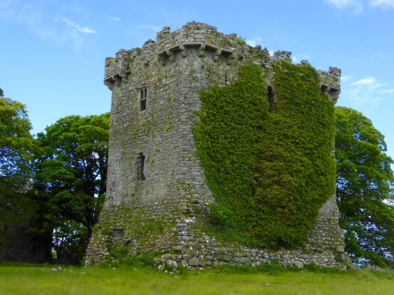 Shrule Castle in Mayo has decorative corbels. Note also the rounded corners of the castle which did away with the need for quoins