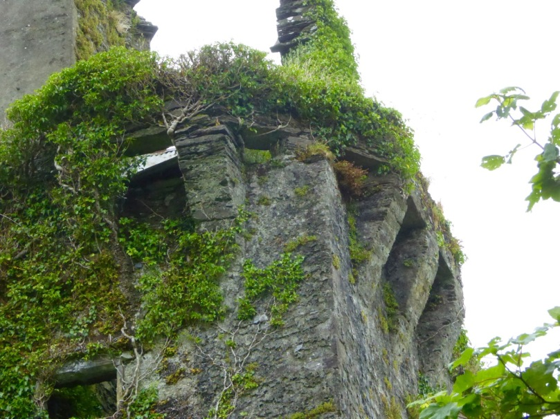 Corner machicolation, or bartizan, at Tocher Castle, north of Dunmanway
