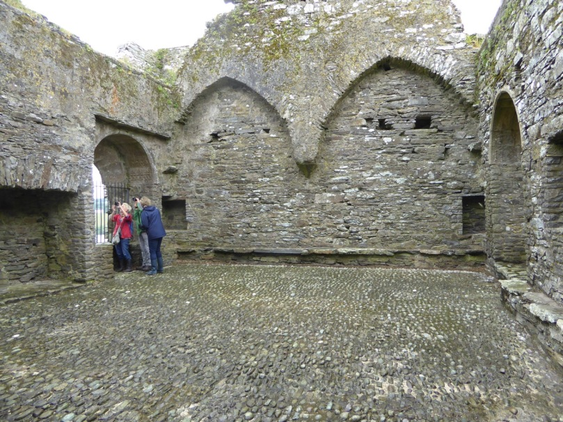 The Great Hall at Ballinacarriga. But what are we all looking at?