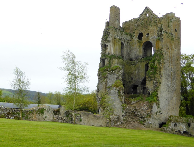 Cullohill Castle - floor levels clearly visible, plus the addition of a later firepalce that obscures a window