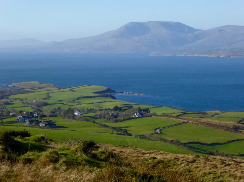 Winter fields on Bantry Bay