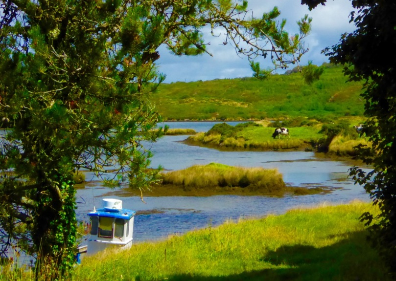 The tiny quay at Greenmount, outside Ballydehob. You pass this on the Rossbrin Loop Trail.