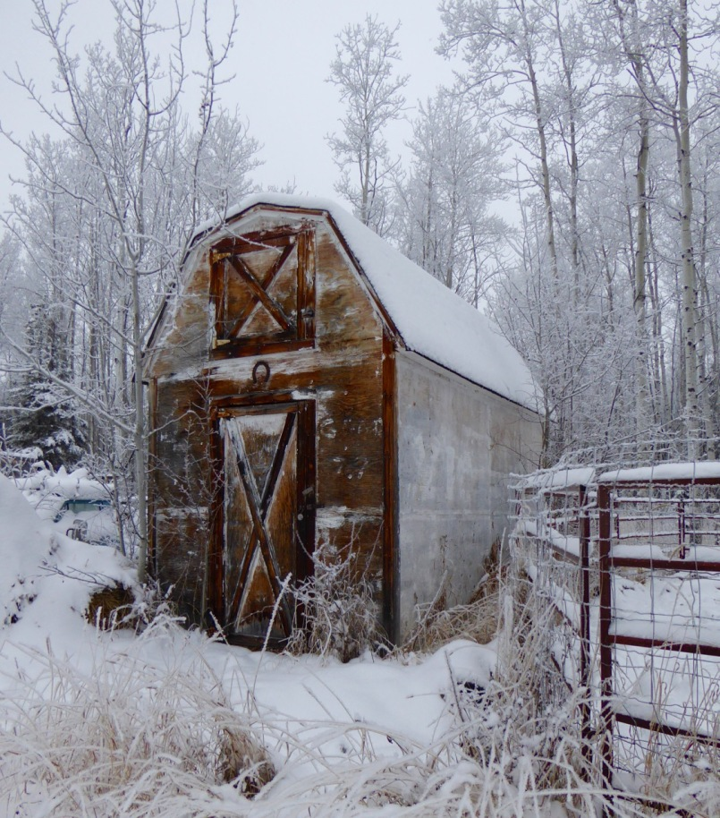 Barnlet in the snow