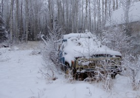 Old truck with antlers
