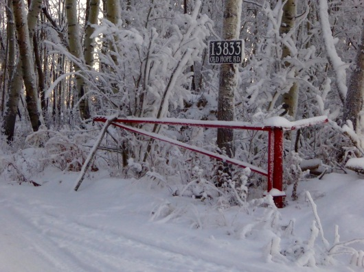 Red gate closer