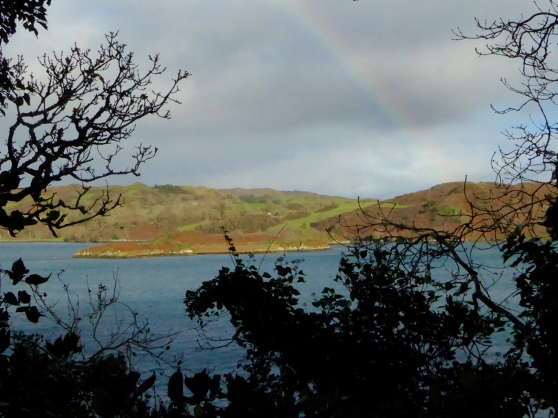 Island on Lough Hyne