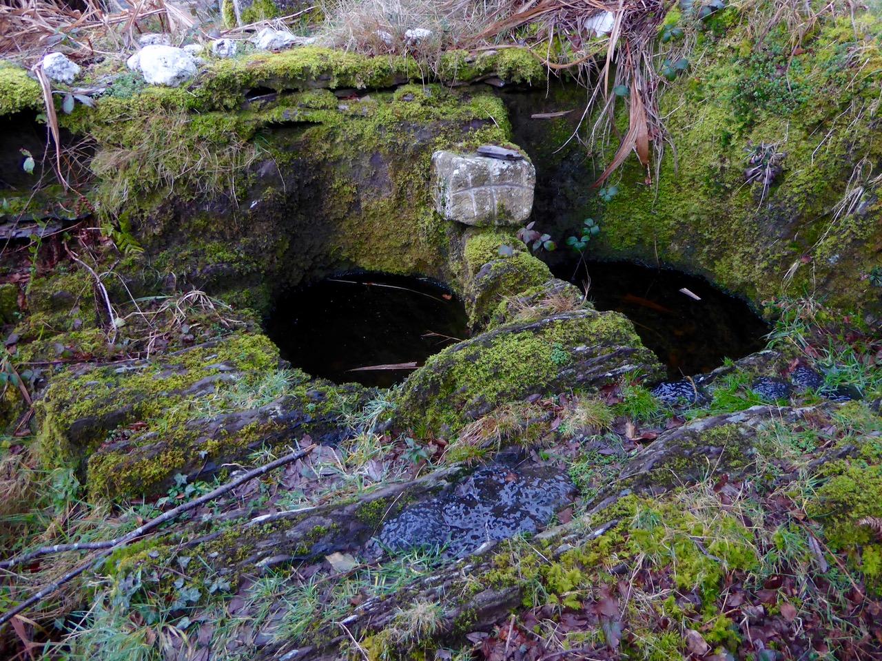 St Lachtan's holy well