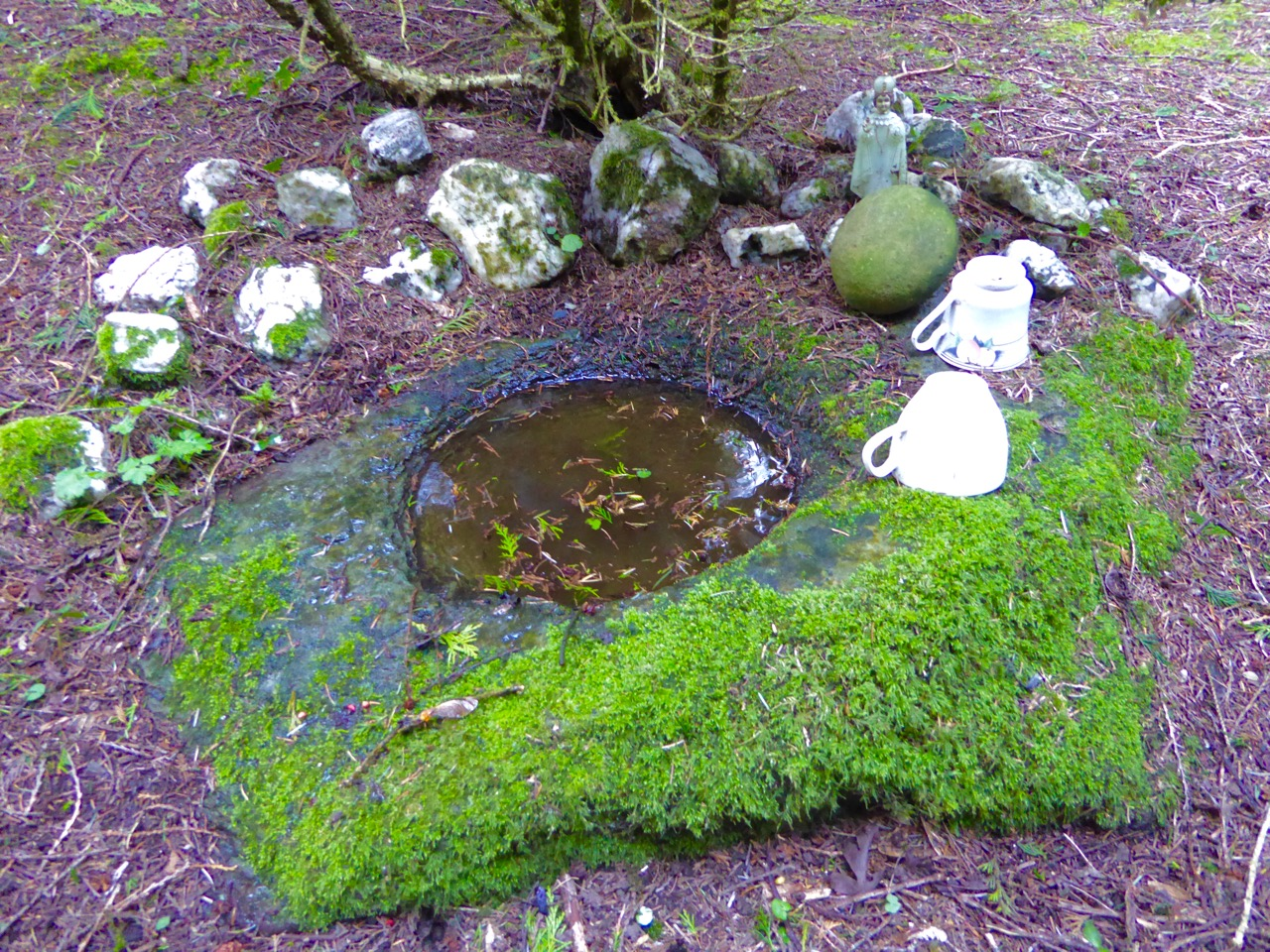 Tiny holy well in the woods