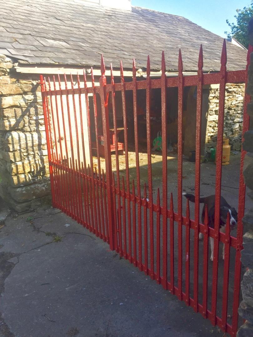 David Ross Gate