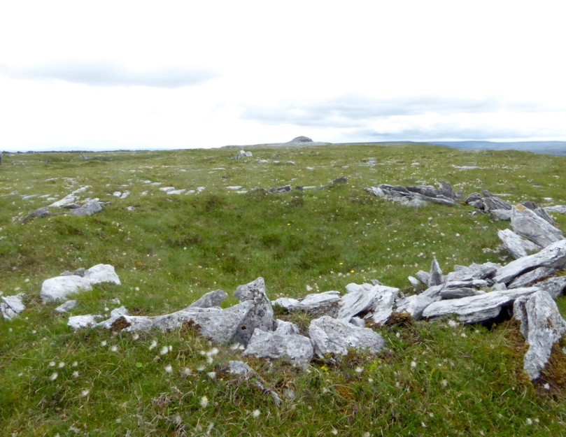 Hut site and cairn