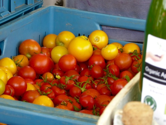Tim's tomatoes