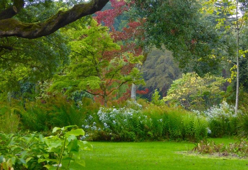 Birr Castle Gardens 2