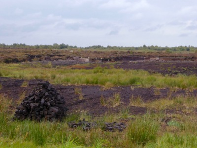 Bog, traditional cutting